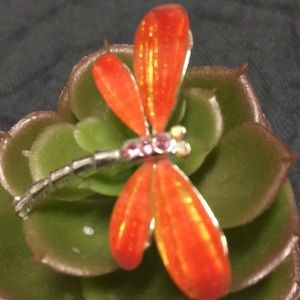 Exquisite dragonfly pendant/brooch